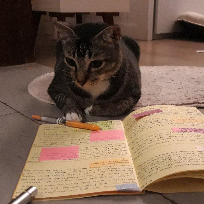 AES50 Membaca Buku